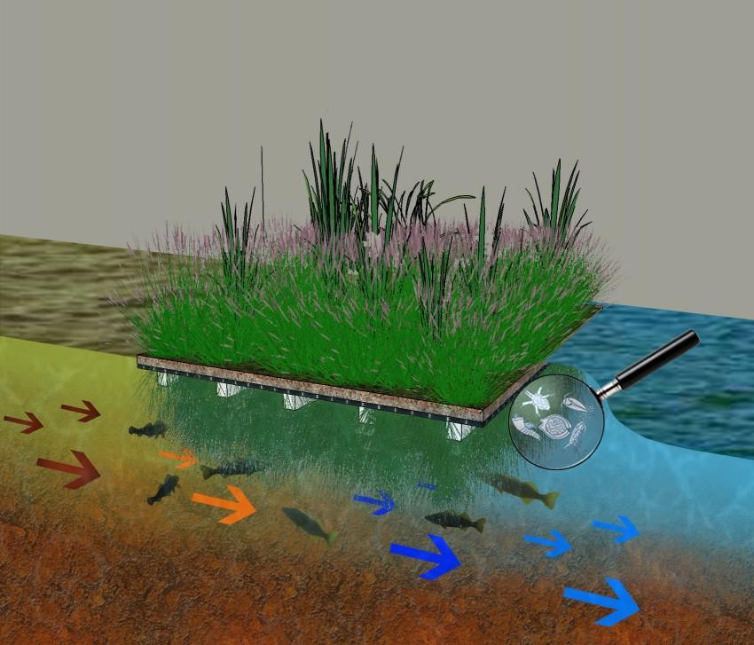 Toula ou le genie des eaux 1974 internetthebest for Genie des eaux